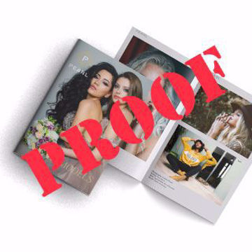 Picture of Wholesale 5.5 x 8.5 CONTENT PROOF Booklet