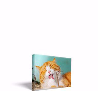 """Picture of 11 inch x 17 inch Canvas Print 1.25"""" Stretcher Bar"""